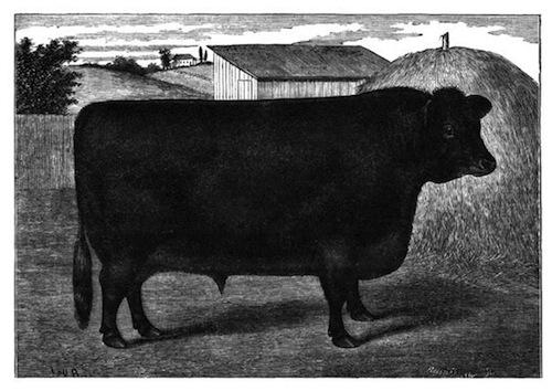 d8b93ef56651e0 The Project Gutenberg ebook of The Prairie Farmer
