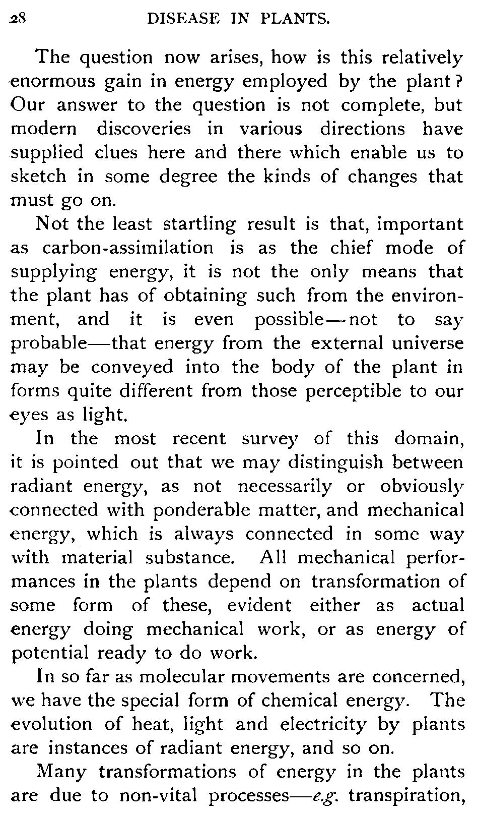 Essay On Beowulf Epic Hero