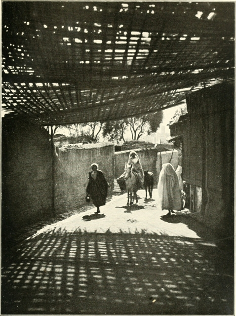 From a photograph from the Service des Beaux-Arts au Maroc Fez—a  reed-roofed street 31f7ca2f24b1