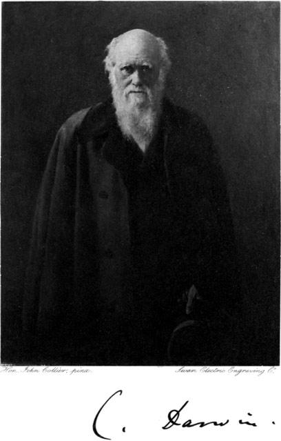 Ludwig wittgenstein essay