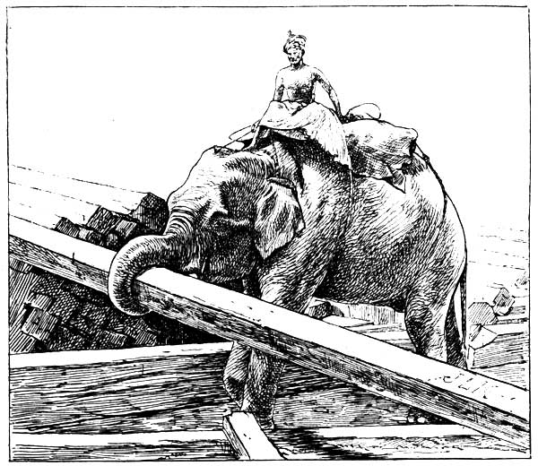 The Project Gutenberg EBook Of Beast And Man In India By John Lockwood Kipling