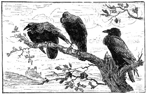 There were Three Ravens sat on a Tree.