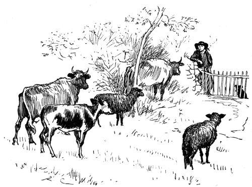 Breton Farmer and Cattle.