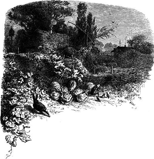 Hosszú sziget akasztotta fel a rudakat