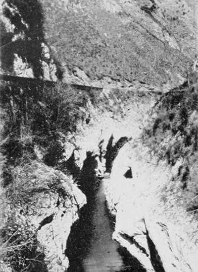 l erezione del cane river