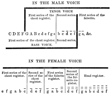 The voice in singing by emma seiler a project gutenberg ebook textual representation of diagram fandeluxe Choice Image