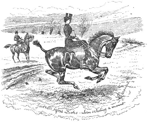 Riding For Ladies With Hints On The Stable By Mrs Power O