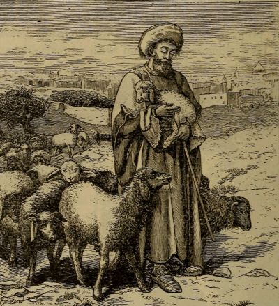 The Project Gutenberg eBook of Story of the Bible Animals by