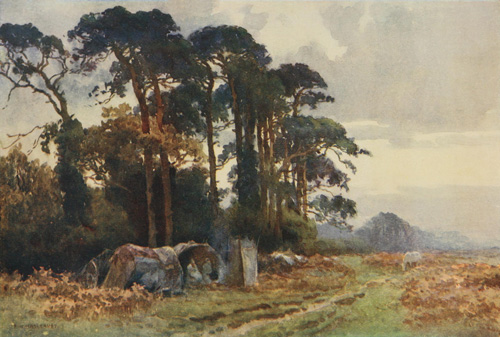 The project gutenberg ebook of the new forest by elizabeth godfrey illustration gipsies at coldharbour fandeluxe Document