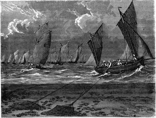 The project gutenberg ebook of the sea its stirring story of the project gutenberg ebook of the sea its stirring story of adventure peril heroism volume 4 by frederick whymper fandeluxe Image collections