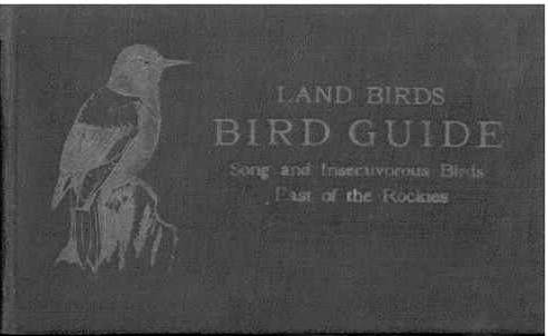 The project gutenberg ebook of bird guide land birds east of the bird guide land birds east of the rockies from parrots to bluebirds fandeluxe Gallery