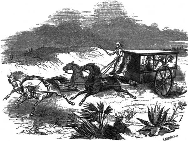 DESERT CARRIAGE