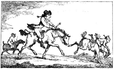 poney Évolution De L/'équitation Drôle T Shirt équestre Mesdames Fit tshirt
