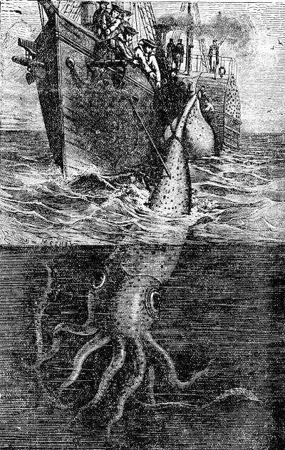 The project gutenberg ebook of oceans story or triumphs of thirdy gigantic cuttle fish see page 649 fandeluxe Gallery