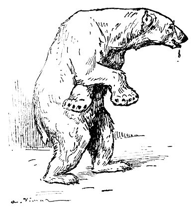The Project Gutenberg Ebook Of Clown The Circus Dog By A Vimar