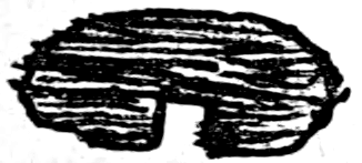 The Project Gutenberg Ebook Of Aubreys Brief Lives Vol