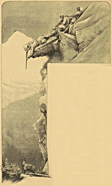 Box of 2 David Aster Hunting Shooting Country Pheasant Print Cotton Handkerchief