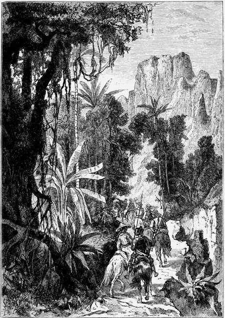 The Project Gutenberg EBook Of Das Naturforscherschiff, By Sophie  Wörishöffer