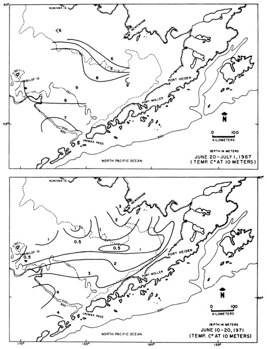 Conservation Of Marine Birds Of Northern North America By James C