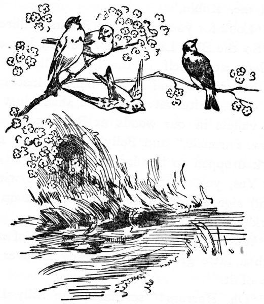Crow Racing Seats