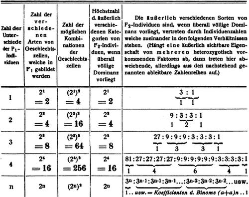 The Project Gutenberg eBook of Grundriß der menschlichen ...