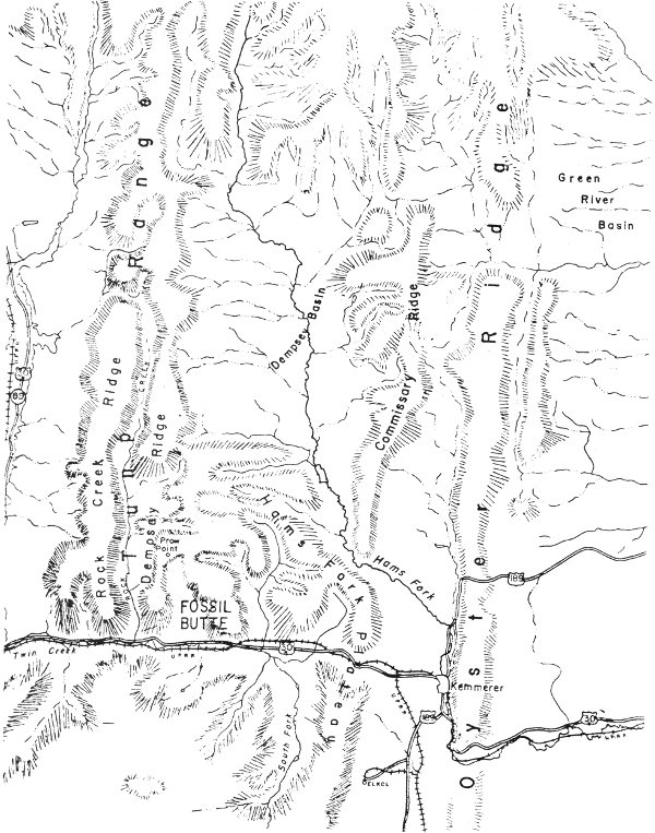 The Geological History Of Fossil Butte National Monument And Fossil