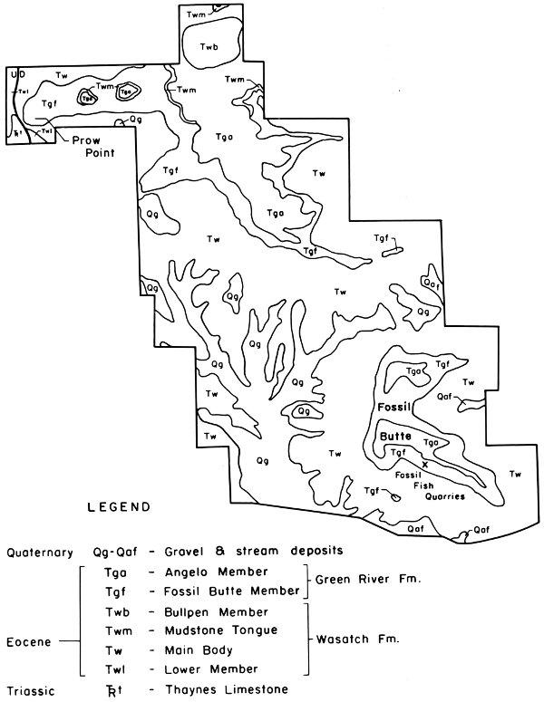 Forest River Flagstaff Wiring Diagram