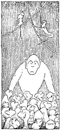 goriila among many monkeys