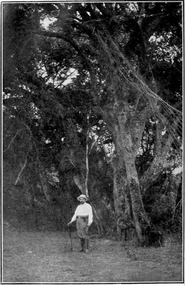 68ca4cad0427 The Project Gutenberg eBook of V. Blasco Ibáñez ses romans et le ...
