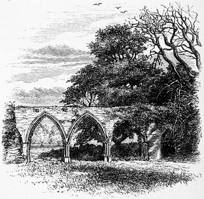 The new forest a project gutenberg ebook arches of the chapter house fandeluxe Image collections