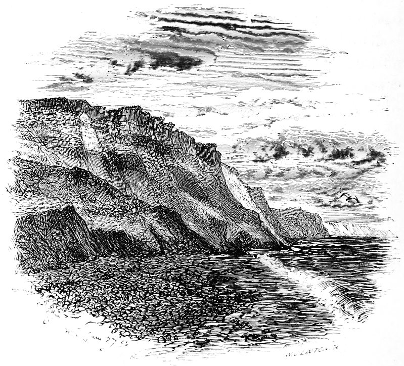 The new forest a project gutenberg ebook the barton cliffs fandeluxe Image collections