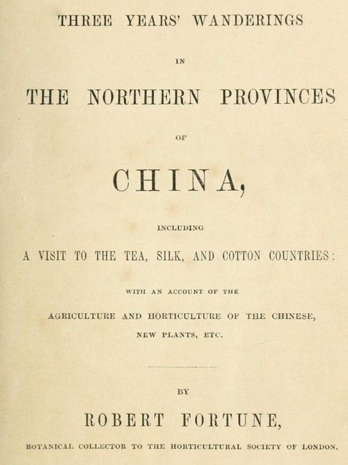 176a86909e958 The Project Gutenberg eBook of Three Years  Wanderings in China