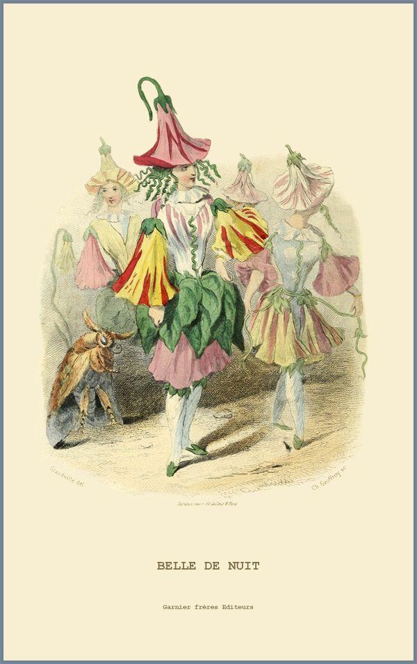 belle chauve-souris fleur Fleurs l/'égalité dont mouches