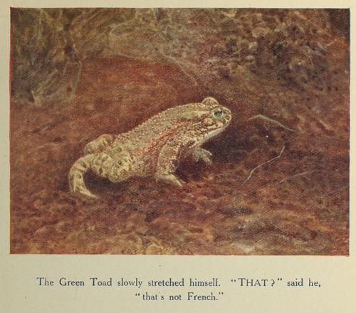 The Project Gutenberg eBook of A Book of Nimble Beasts, by