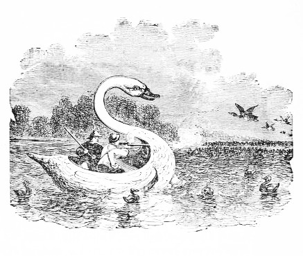765e565051f The Project Gutenberg eBook of Florida and the Game Water Birds