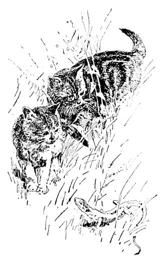 The Project Gutenberg eBook of Fábulas de Samaniego.