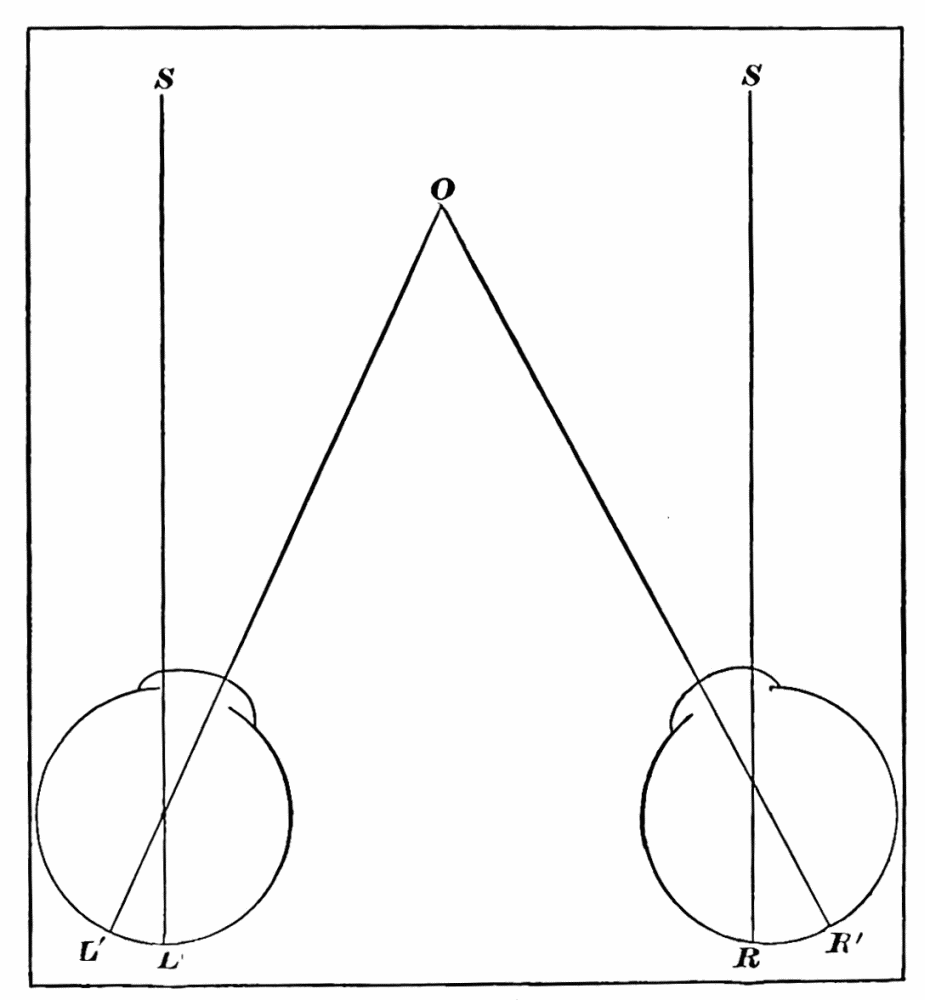 The Project Gutenberg Ebook Of Psychology By William James Printing Press Diagram As Suggests Image Unavailable Fig 10
