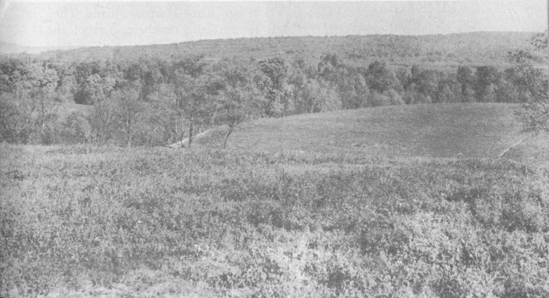 Antietam national battlefield maryland by frederick tilberg a meadow just beyond trees bordering antietam creek marks top of bluffs where many of hunts union batteries were placed this view from one half mile in fandeluxe Choice Image