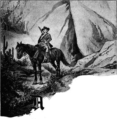 The Project Gutenberg eBook of Pieter Maritz, der Buernsohn von ...