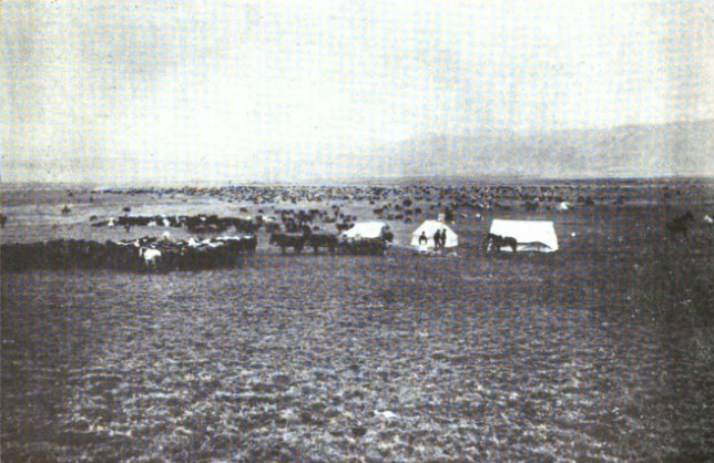 Roundup Camp—Fall of 1896—DHS and CK Outfits On the Big Dry near Oswego, Montana
