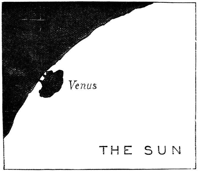 Venus Free Tubes Look Excite And Delight Venus