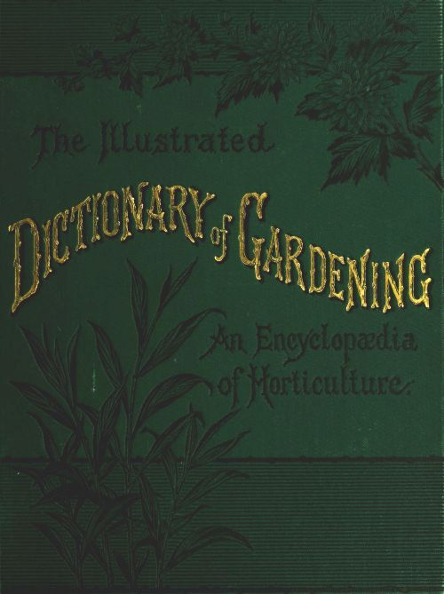 The project gutenberg ebook of the illustrated dictionary of reference to illustrations of plants other than those figured in this work sect i roots tuberous sect ii roots fibrous or napiform contents fandeluxe Gallery