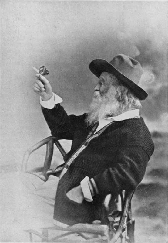 The Project Gutenberg eBook of A Life of Walt Whitman a73bb0688f88