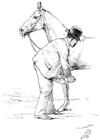 The Project Gutenberg Ebook Of Illustrated Horse Breaking By Capt
