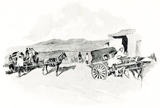 """Transportation of Army supplies by /""""Caraboo/"""" War /& Conflict Water ox cart"""