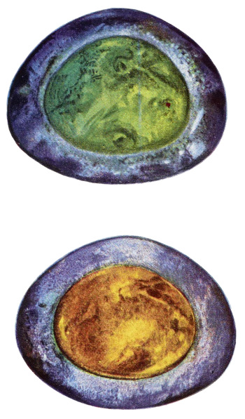 framed agate slices.htm the magic and science of jewels and stones  by isidore kozminsky  magic and science of jewels and stones
