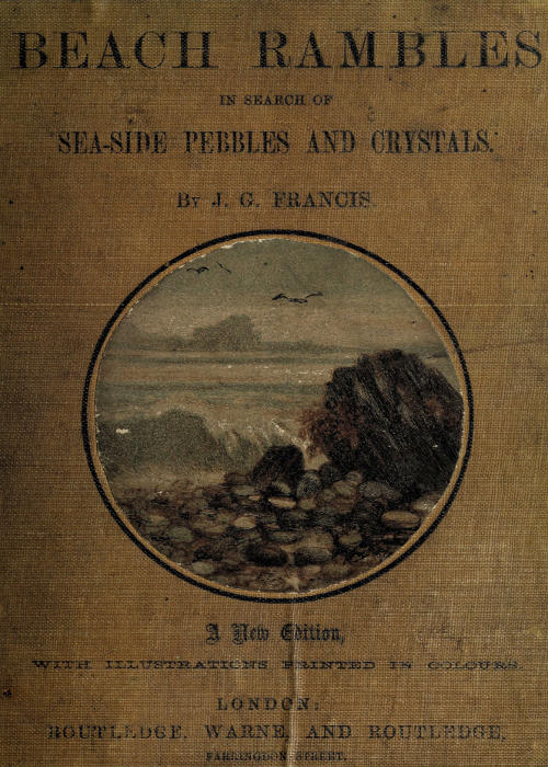 The Project Gutenberg eBook of Beach Rambles in Search of