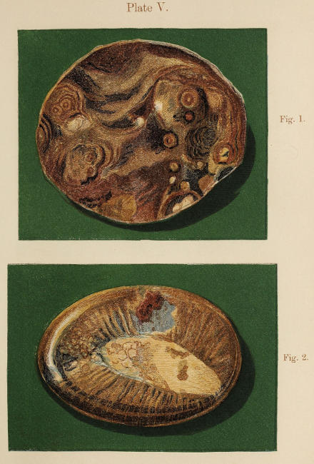 framed agate slices.htm the project gutenberg ebook of beach rambles in search of seaside  the project gutenberg ebook of beach
