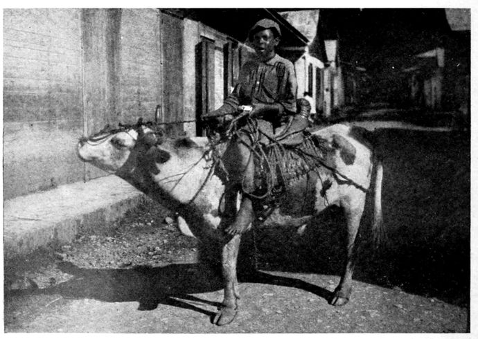 The Project Gutenberg eBook of Roaming Through the West