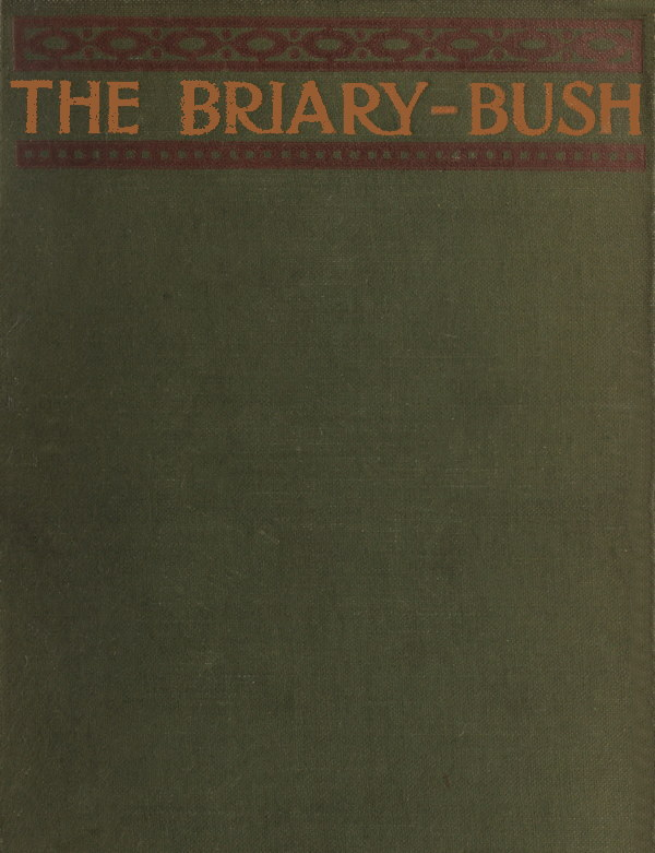 The Briary Bush By Floyd Dell A Project Gutenberg Ebook